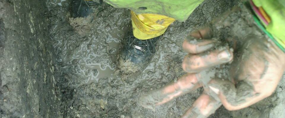 Muddy bun